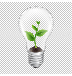 bulb with green sprout transparent background vector image