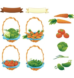 Collection Vegetables Cucumber Tomato Cabbage and vector image vector image
