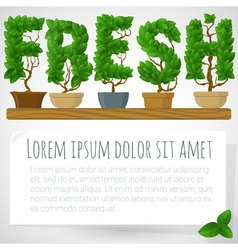 Green fresh houseplant mock up vector image