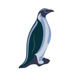 penguin isolated on white background vector image