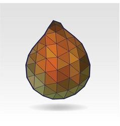 salak salacca or zalacca fruit low poly art vector image