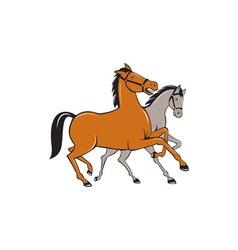 Two horses prancing side cartoon vector