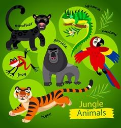 wild Jungle animals vector image vector image
