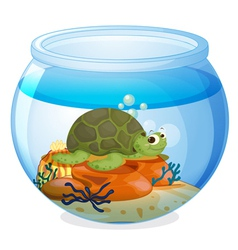 A water bowl and tortoise vector