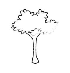 Bush plant icon image vector