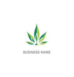 cannabis green leaf weed logo vector image