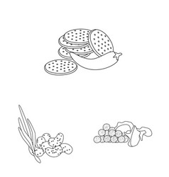 Isolated object taste and crunchy symbol set vector