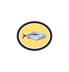 Kingfish cartoon oval vector