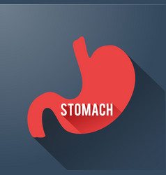 Medical digestive template vector