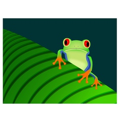 Red eyed tree frog sitting on leaf vector