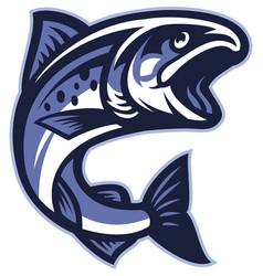 salmon fish vector image