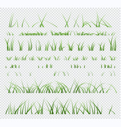 set elements green grass isolated vector image