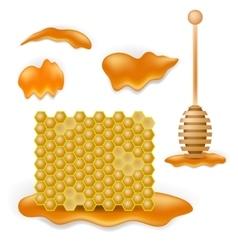 Sweet honey combs vector