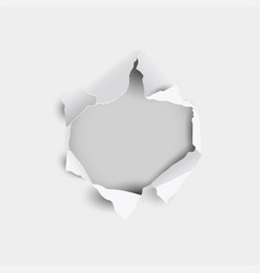 torn hole and ripped in sheet paper on a gray vector image