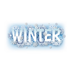 Winter text with white snowflakes vector
