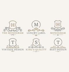 Retro royal vintage shields logotype set vector