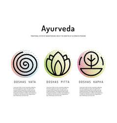 Ayurveda body types vector