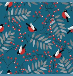 Bullfinch birds berries mountain ash tree vector
