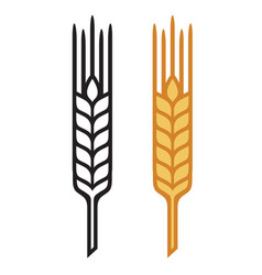 ears of wheat barley or rye visual icons vector image