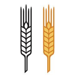 ears wheat barley or rye visual icons vector image