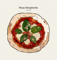 pizza margherita hand draw sketch vector image