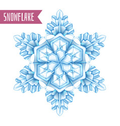 realistic snowflake composition vector image