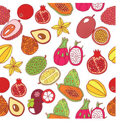 seamless hand drawn pattern with tropical exotic vector image
