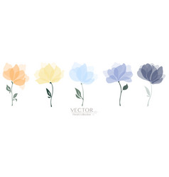 set colorful floral collection vector image