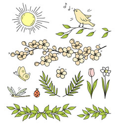 set flowers branches sun bird butterfly vector image