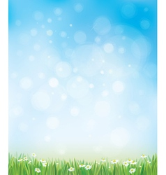 sky grass background vector image vector image