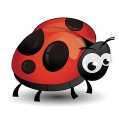 comic ladybird isolated vector image vector image