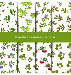 set of seamless pattern with tree branches vector image vector image