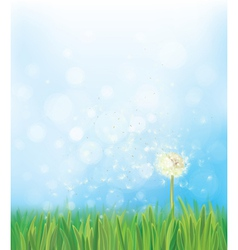 Dandelion sky background vector
