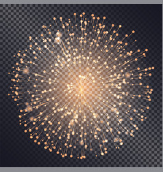 firework explosive burst flare decorative glowing vector image