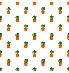 house cacti pot pattern seamless vector image