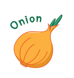 Isolated onion icon vector