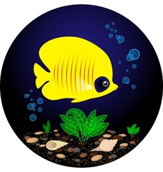 Tropical yellow fish is swimming under water vector image