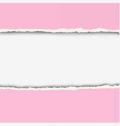 Two pieces of torn rosy color paper with ripped vector