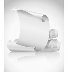 scrolls paper vector image vector image