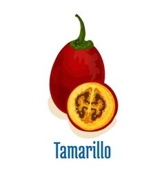 Tamarillo fruit icon emblem vector