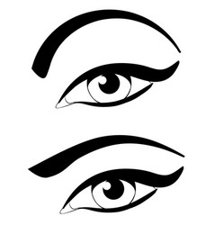 eye with modern eyebrows vector image