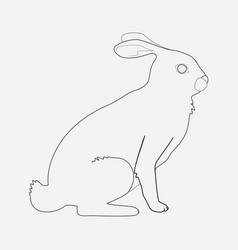 rabbit icon line element of vector image
