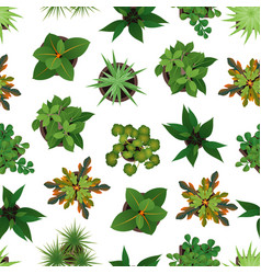 realistic detailed 3d top view green plants vector image