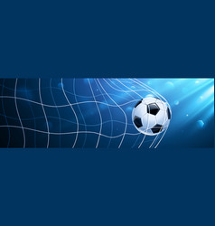 soccer ball in a grid vector image