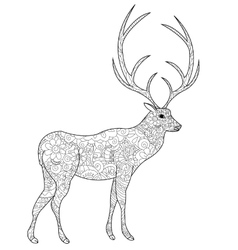 Deer coloring book for adults vector image