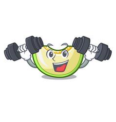 Fitness slice of melon isolated on cartoon vector