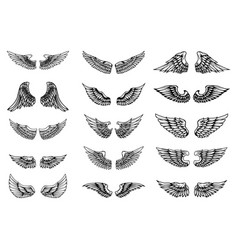 set of bird wings in tattoo style design element vector image