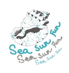 sea sun fun shell on white background vector image