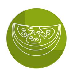 Sticker fresh piece of lemon organ vegetable vector