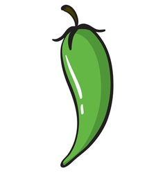 Green chili vector